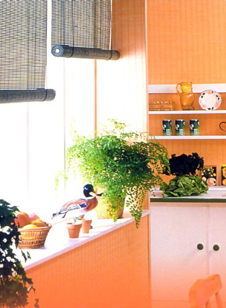 выбрать занавески для кухни
