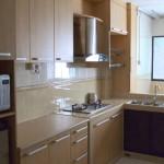 встраиваемые газовые панели для кухни