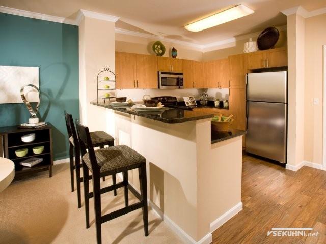 Кухня студия с барной стойкой: варианты оформления