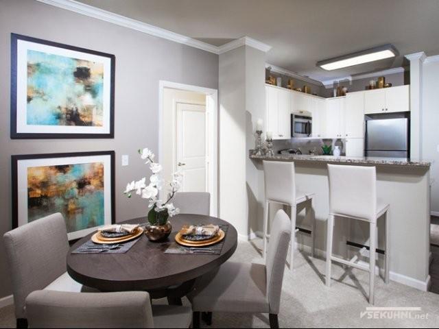 Кухня студия с барной стойкой в небольшом помещении